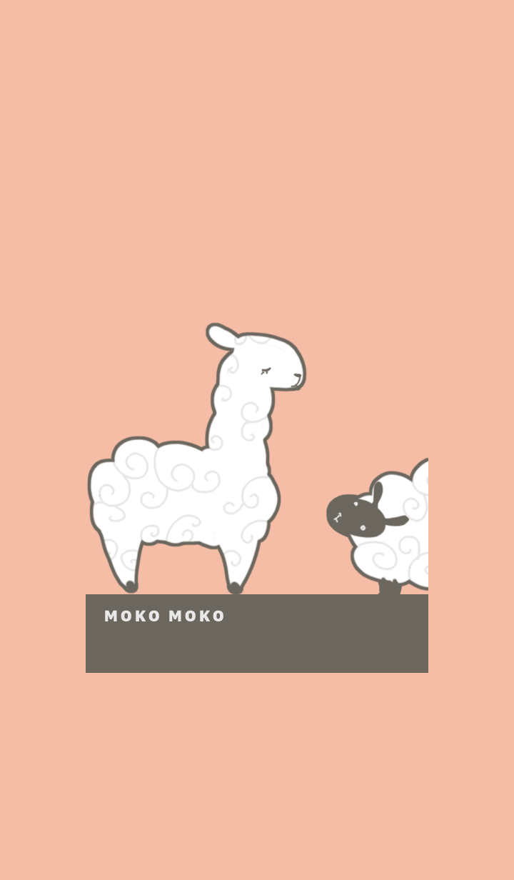 Sheep alpaca