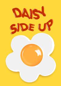 Daisy Side Up