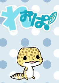 Leopardgecko!