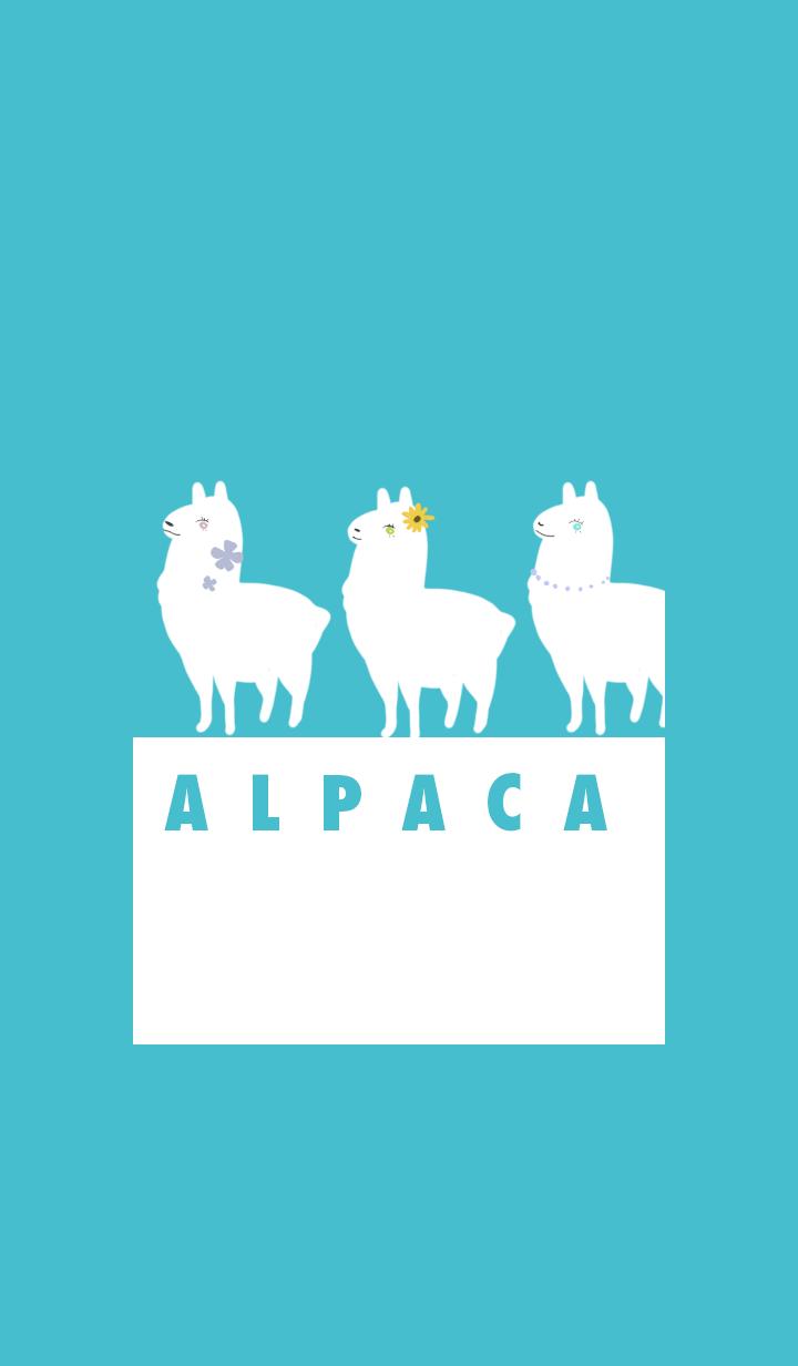 Summer Alpaca