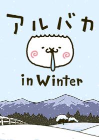 fool alpaca in Winter (Theme)