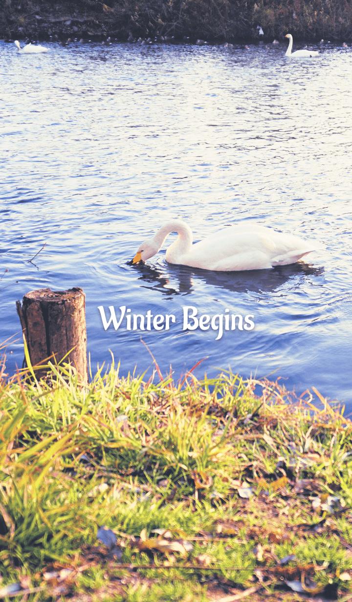 Winter Begins