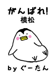 YOKOMATSU g.no.8477