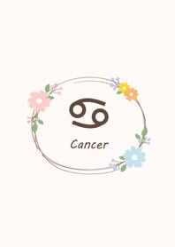 氣質花朵˙巨蟹座