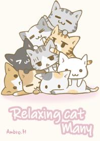 很多放鬆的貓