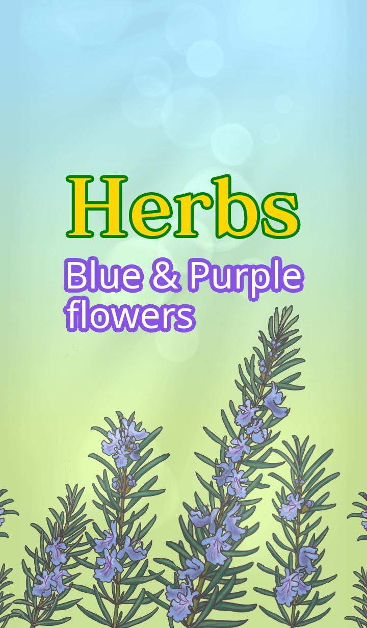 Herbs=Blue & Purple flowers=