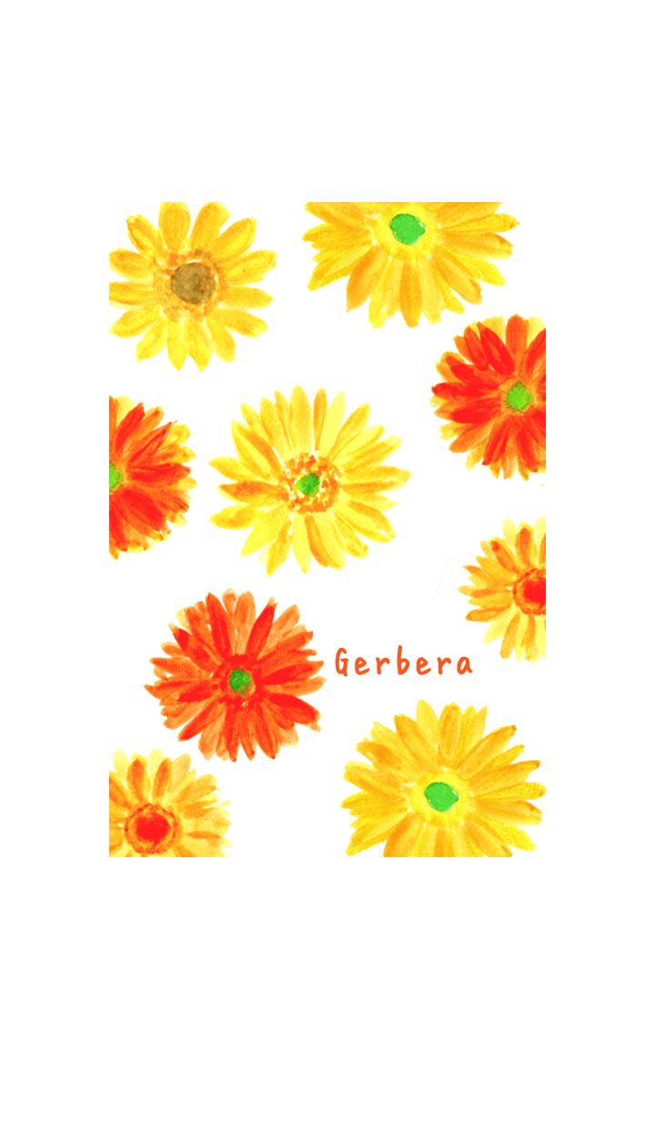 Cute Gerbera