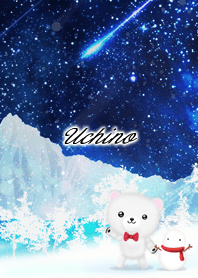 Uchino Polar bear winter night sky