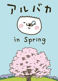 fool alpaca in Spring (Theme)