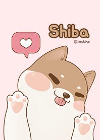 Simple pink cute puppy (shiba)