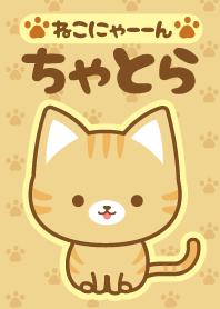 cat-1-