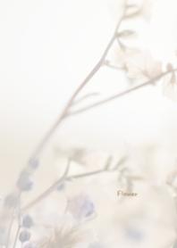 Flower Theme 32