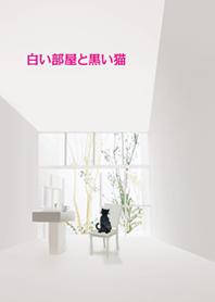 白色的房間和黑貓