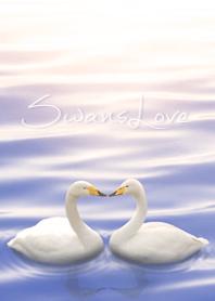 SwansLove