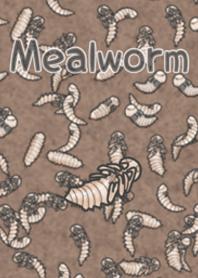 你喜歡蠕蟲嗎? 【蛹】
