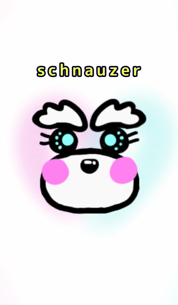 colorful schnauzer dress up