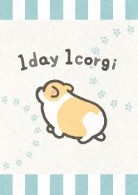 1day1corgi