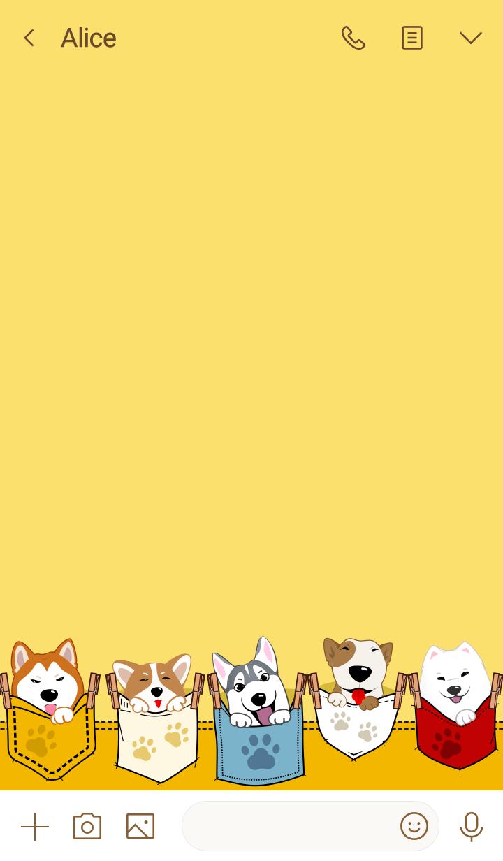 Pocket pup (Surprise!)