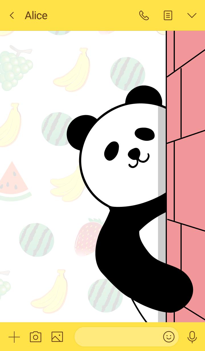 Panda everyday!