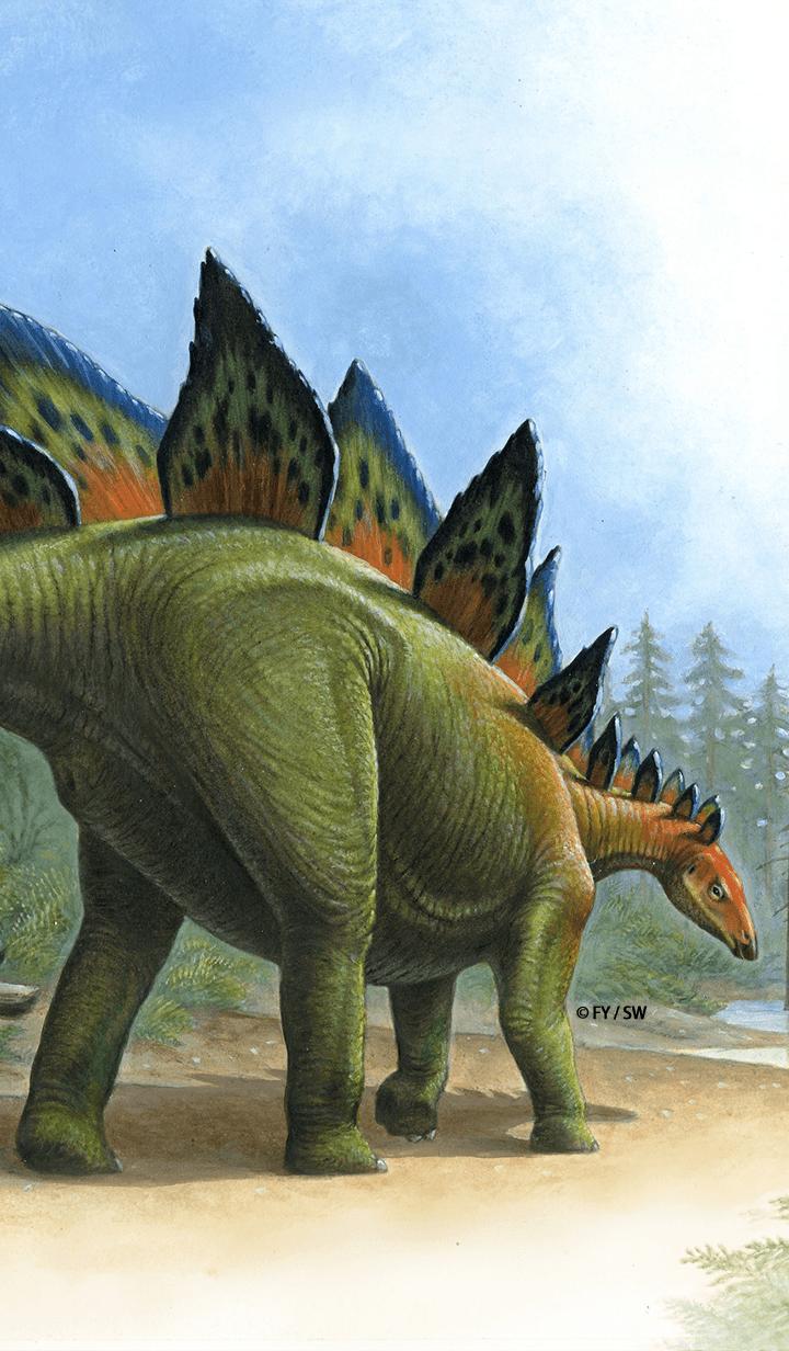 Dinosaur Thyreophora