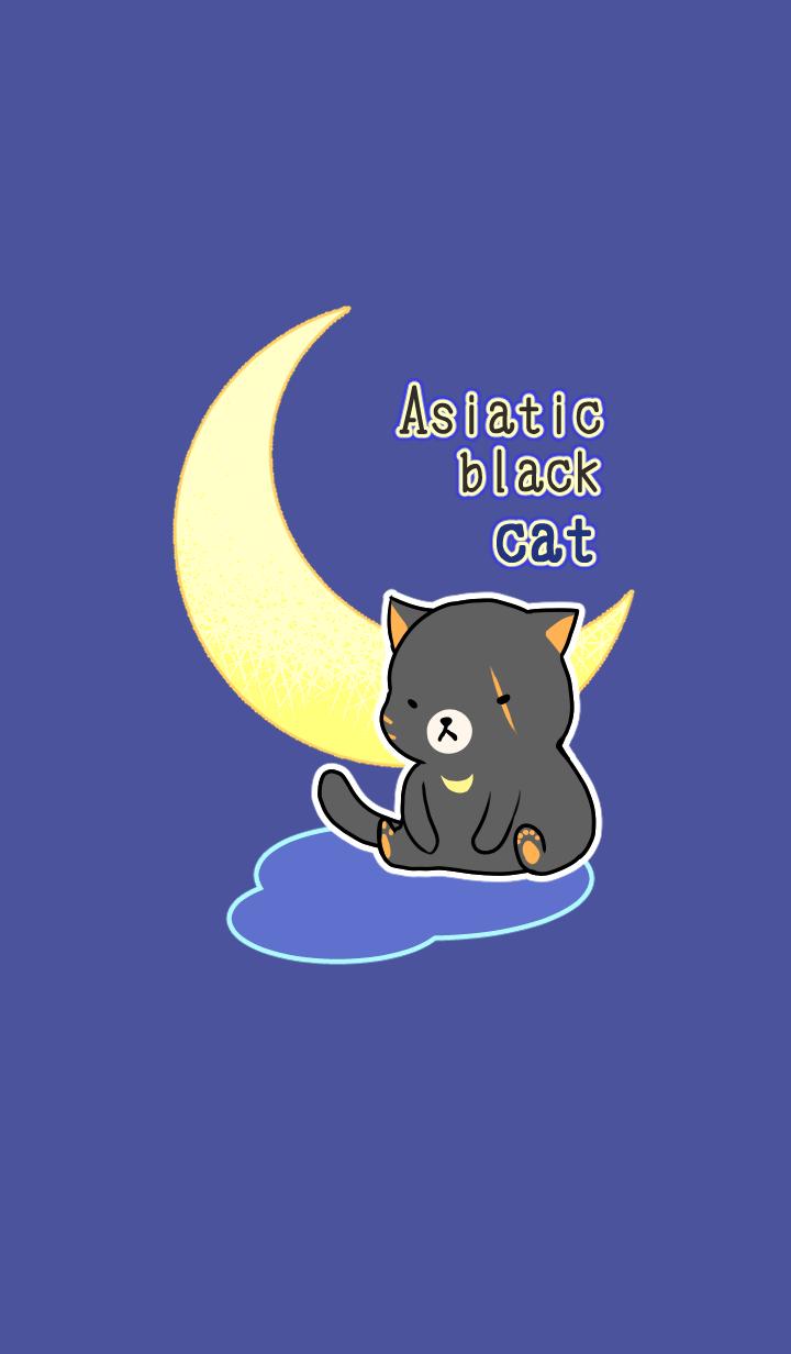 Asiatic black cat theme