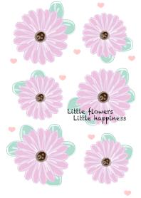 Baby violet flowers 20