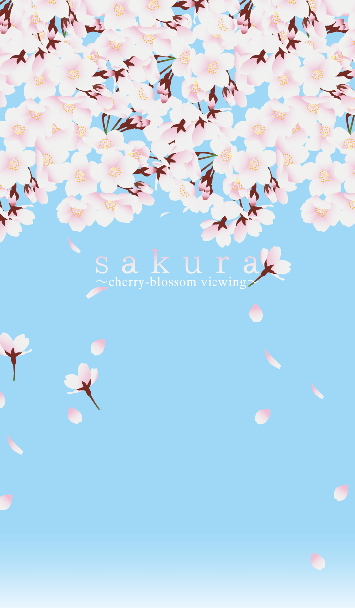 sakura(cherry blossom viewing)