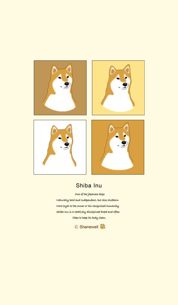汪汪們的日常系列 - 柴犬