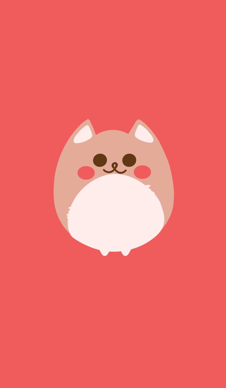 Cute dog 6 :)