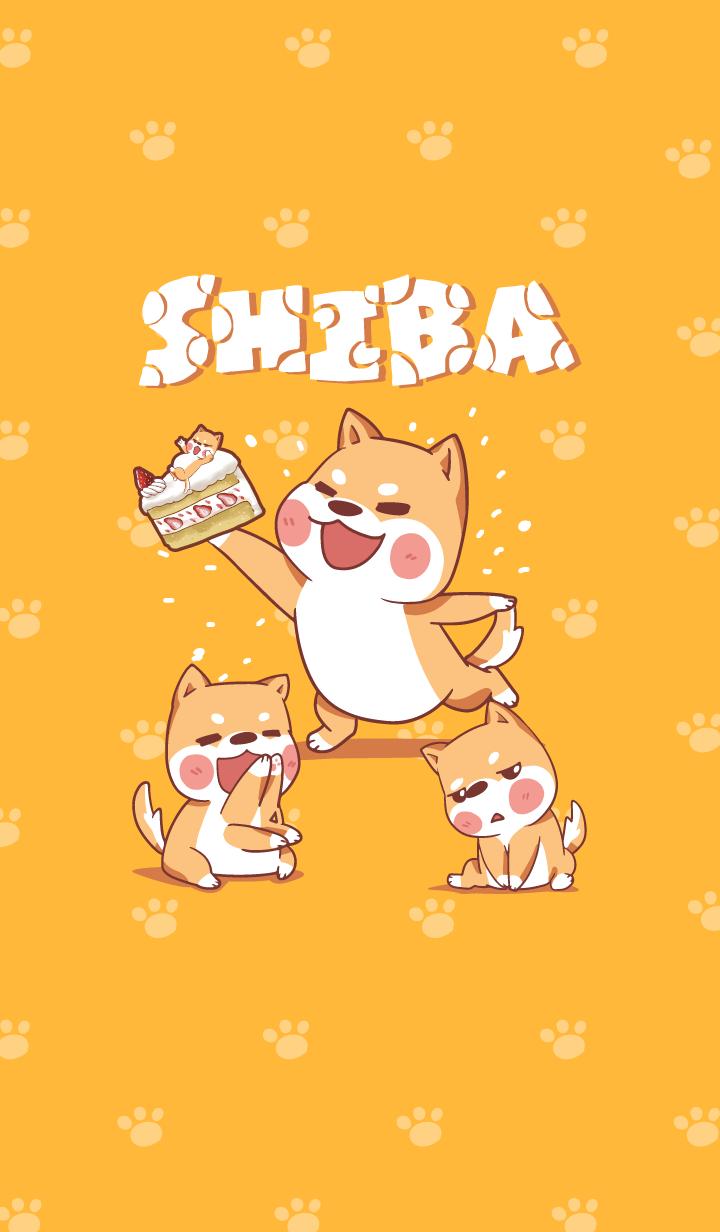 Shiba Naughty dog 4