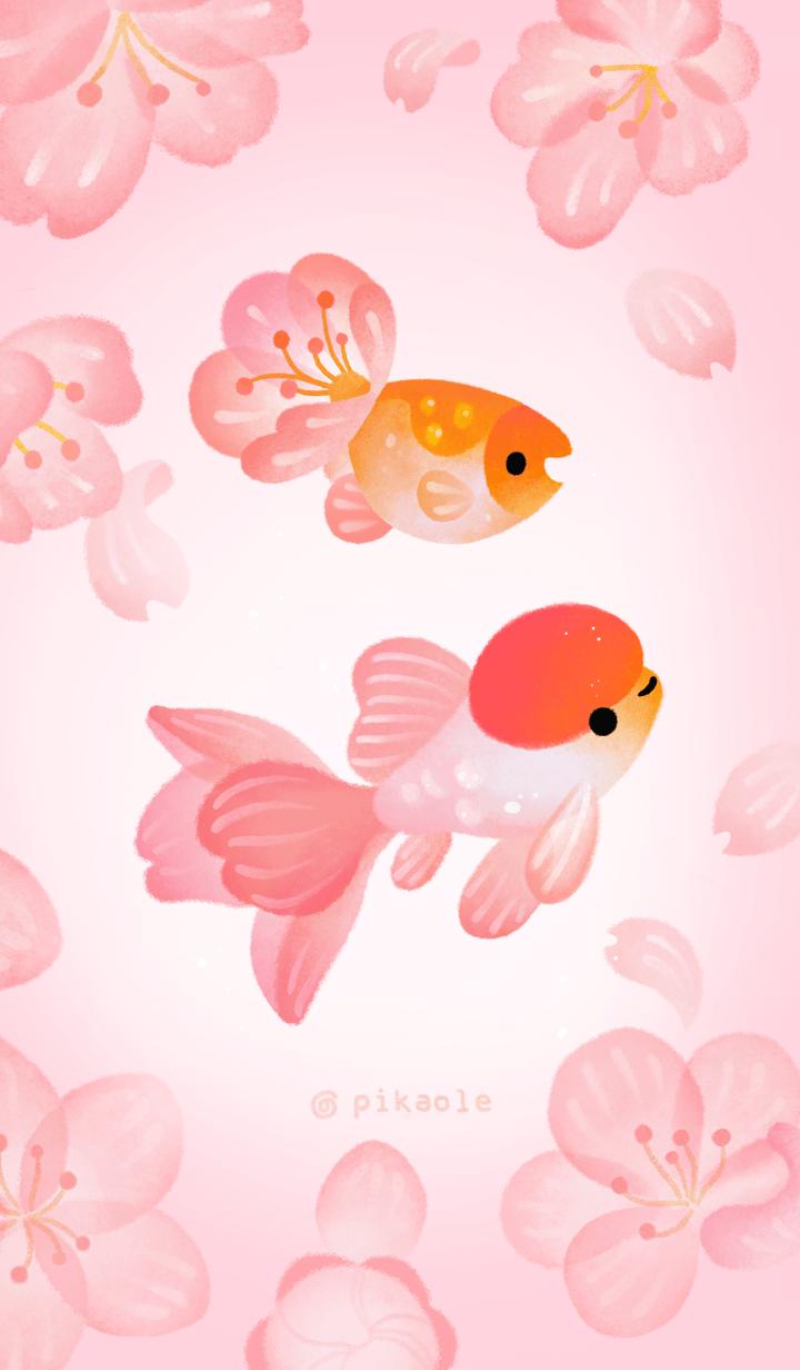 Sakura goldfish