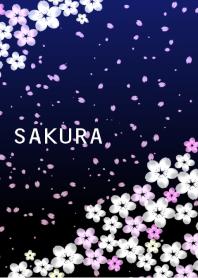 Beautiful SAKURA8 Night