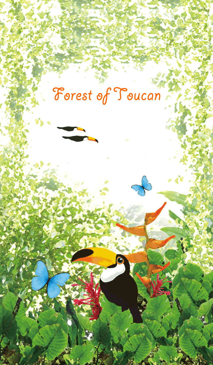 Forest of Toucan -Toucan and Morpho-