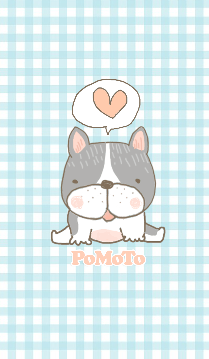 PoMoTo The Dog