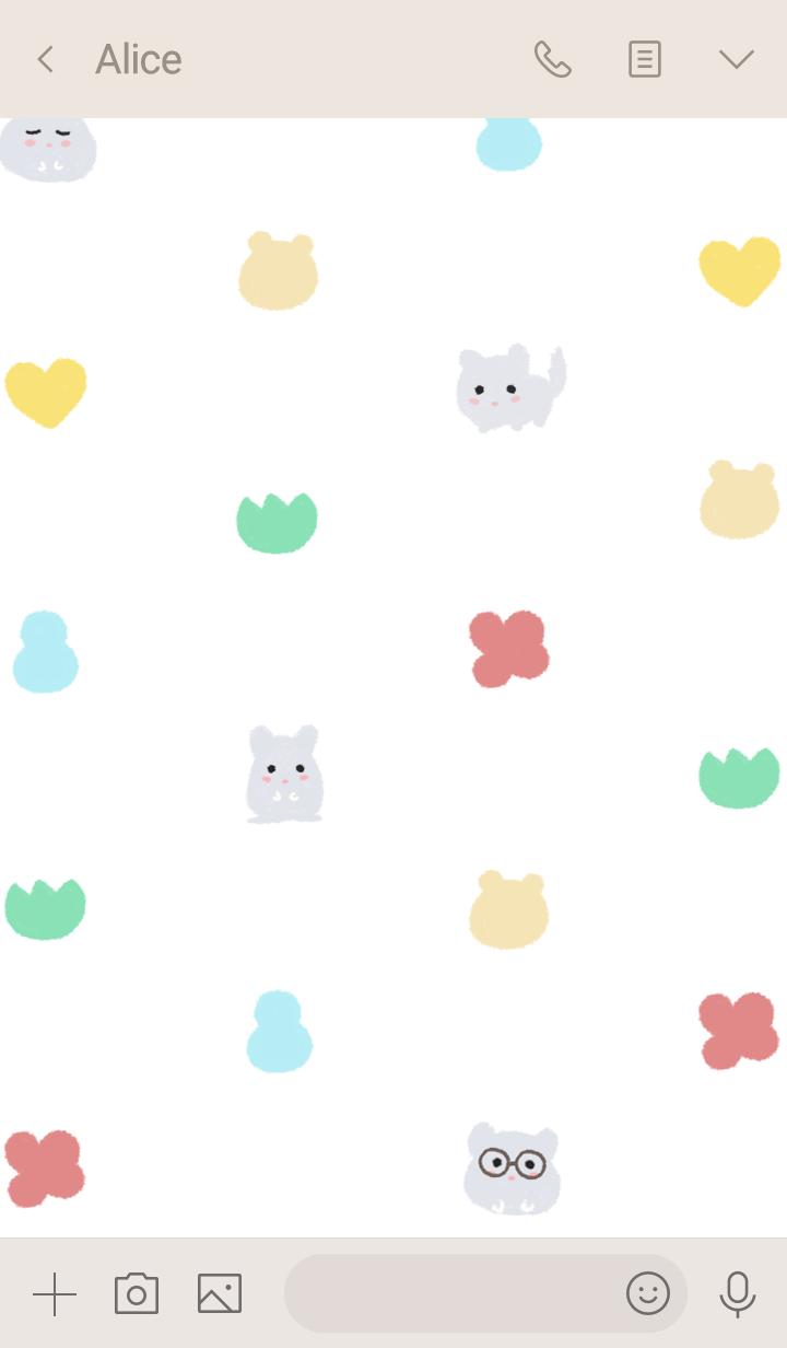 cute chinchilla