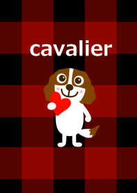 Cavalier dog and check from japan