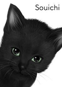 Souichi Cute black cat kitten