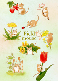 Field mouse illustration (spring)