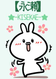 Nagase 2 name usagi Green