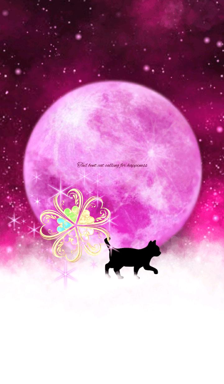 幸運を呼ぶ尾曲がり猫~かぎしっぽ~③