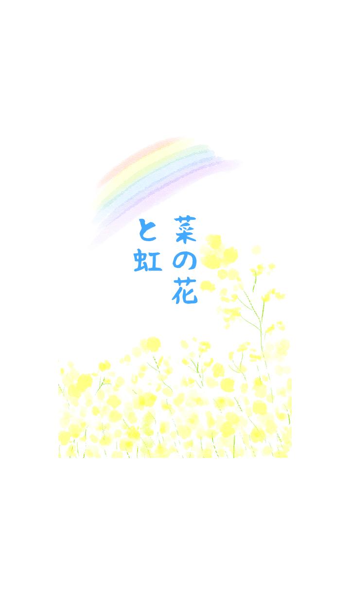 菜の花と虹