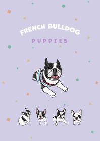 French Bulldog pied - purple