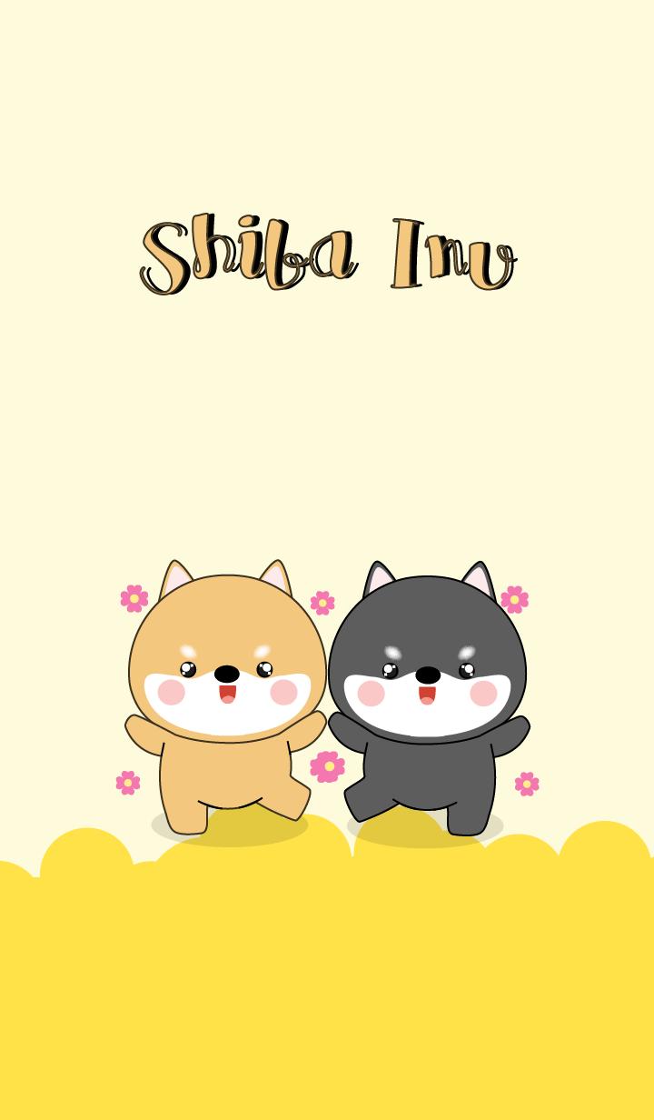 Cute Shiba Inu & Black Shiba Inu (jp)