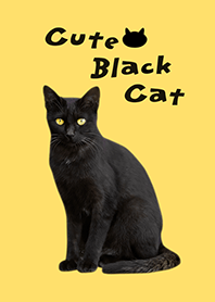 Cute Black Cat / Yellow