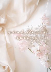 light pink flower_spring