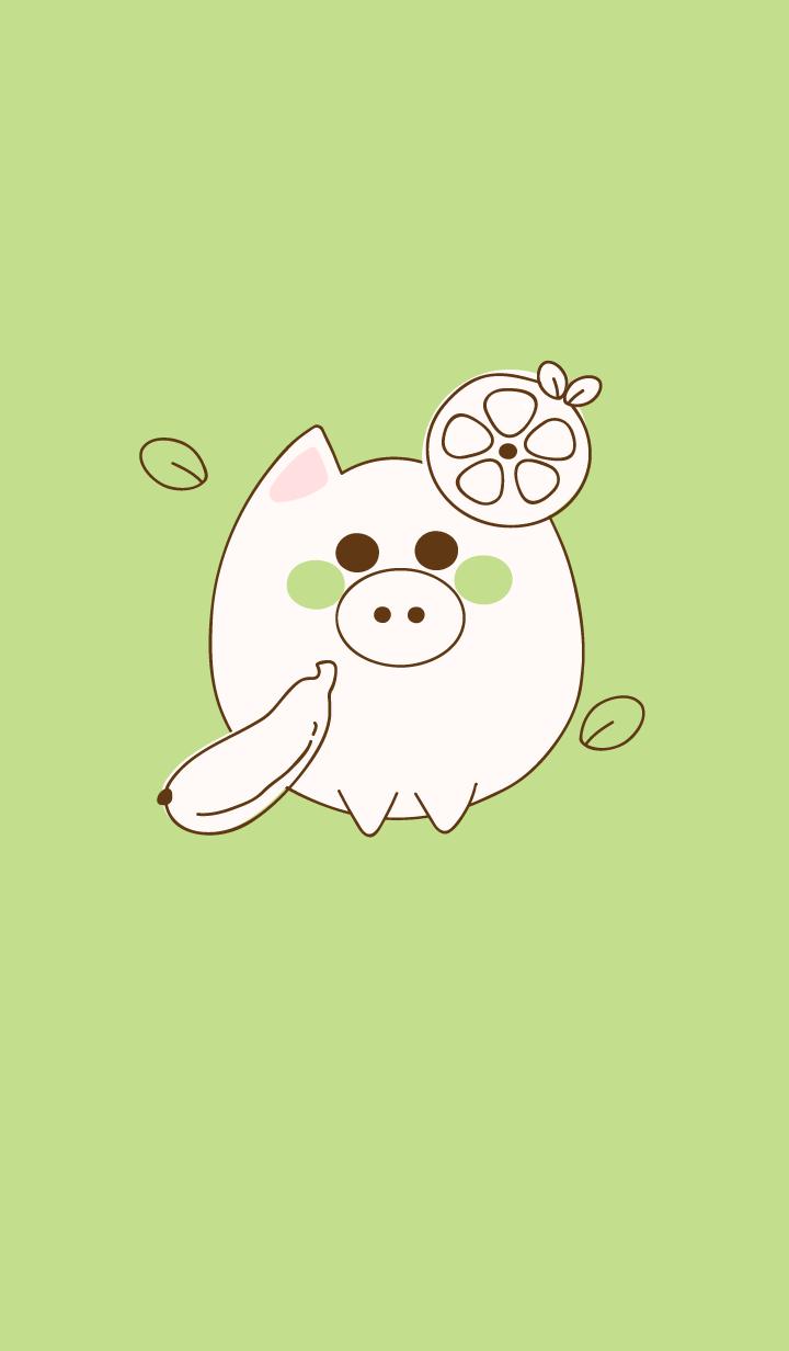 baby pig 44
