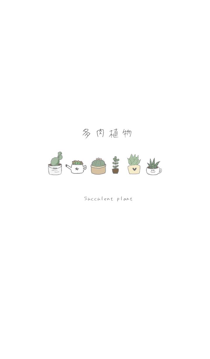 -Succulent plant-