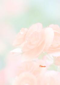 Flower Theme 47