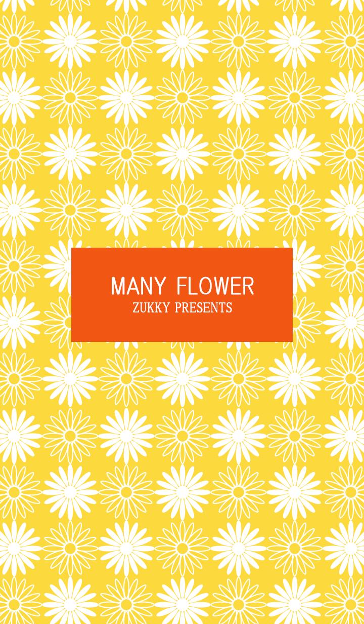 MANY FLOWER62