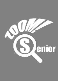 Senior Zoom JP